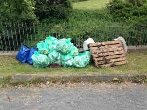 Some of the rubish that was collected from the Beck